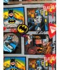 Polaire BD Batman